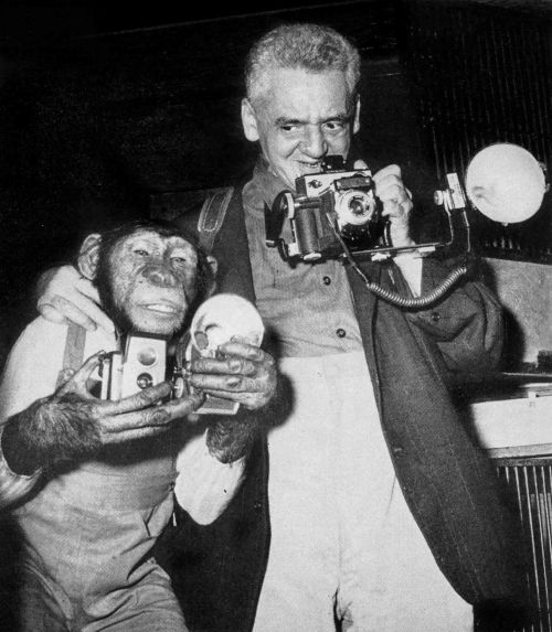 weegee and chimp D.D. Teoli Jr. A.C.